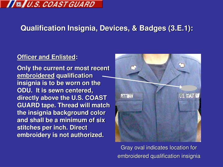 Qualification Insignia, Devices, & Badges (3.E.1):