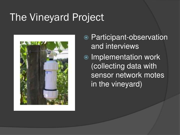 The Vineyard Project