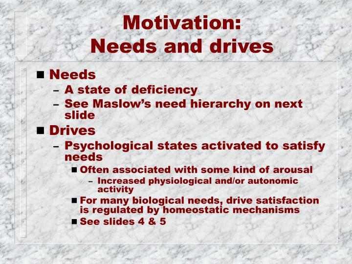 Motivation needs and drives