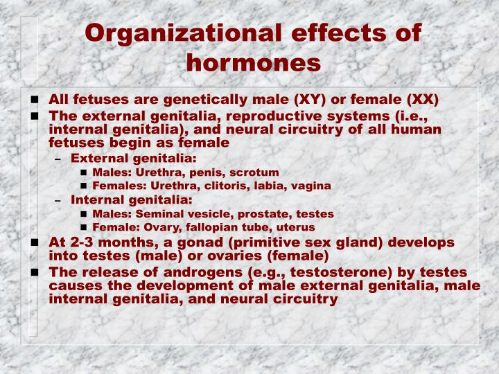 Organizational effects of hormones