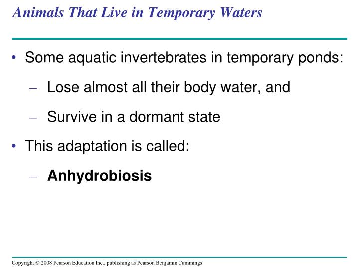 Animals That Live in Temporary Waters