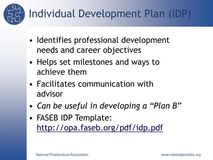 Individual Development Plan (IDP)