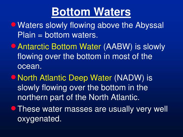 Bottom Waters