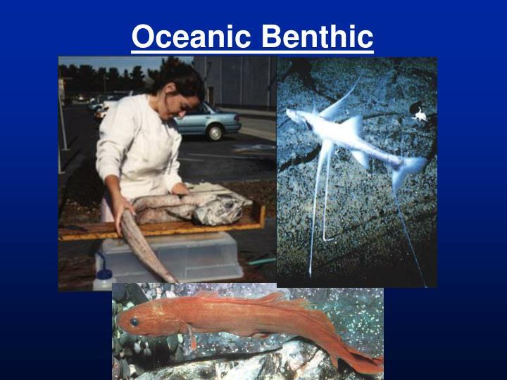 Oceanic Benthic
