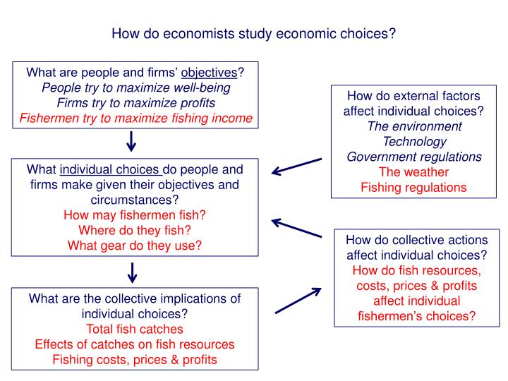 How do economists study economic choices?