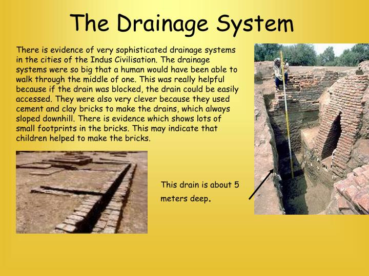 The Drainage System