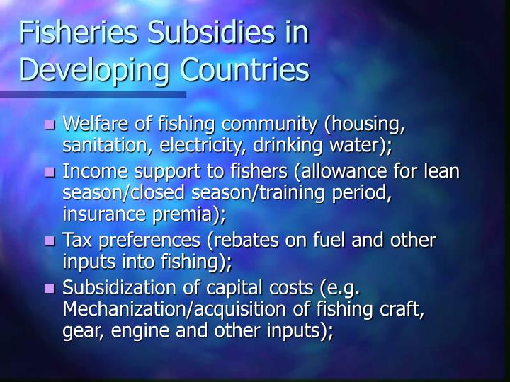 Fisheries Subsidies in Developing Countries
