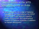 ongoing debate at the wto negotiating group on rules