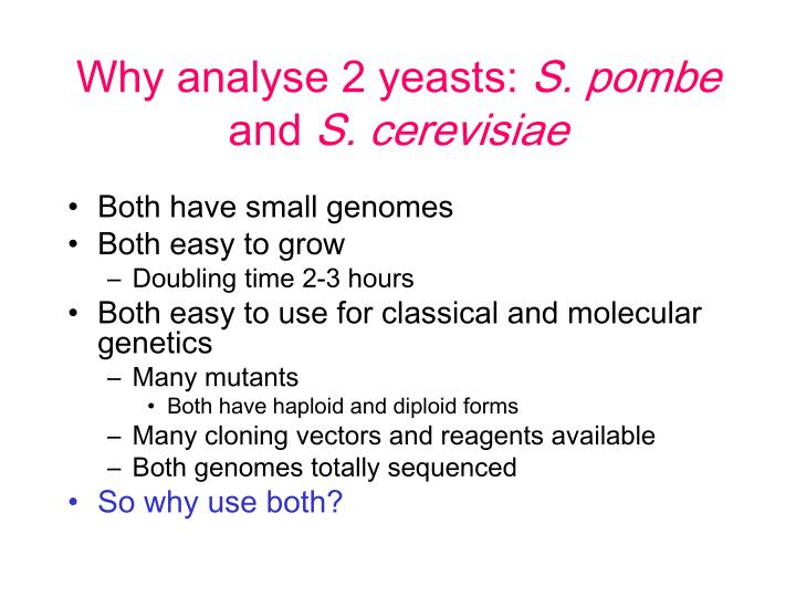 Why analyse 2 yeasts: