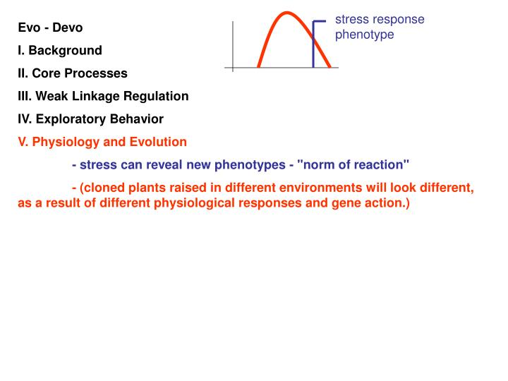 stress response phenotype