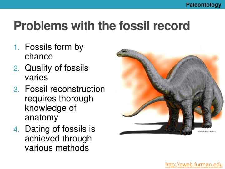 what are the methods of dating fossils The relative dating techniques are very effective when it comes to radioactive  isotope or radiocarbon dating however, not all fossils or remains.