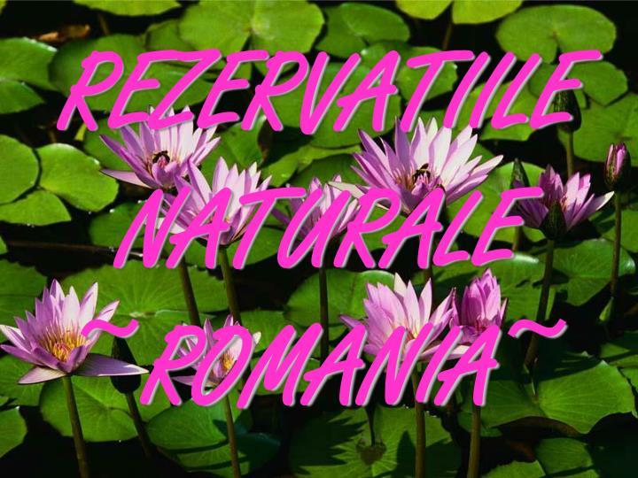 REZERVATIILE NATURALE