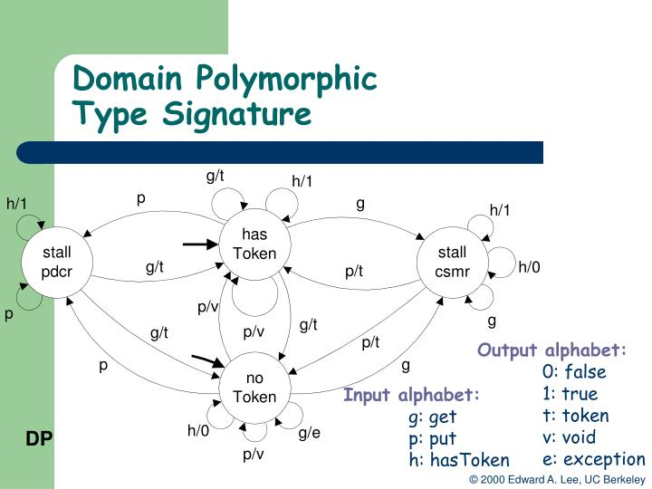 Domain Polymorphic