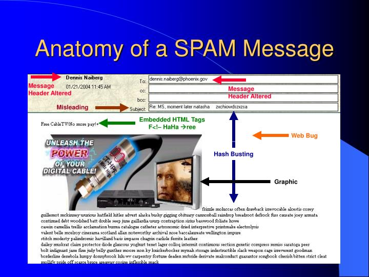 Anatomy of a SPAM Message