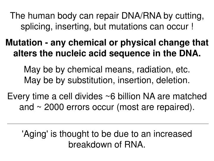 The human body can repair DNA/RNA by cutting, splicing, inserting, but mutations can occur !