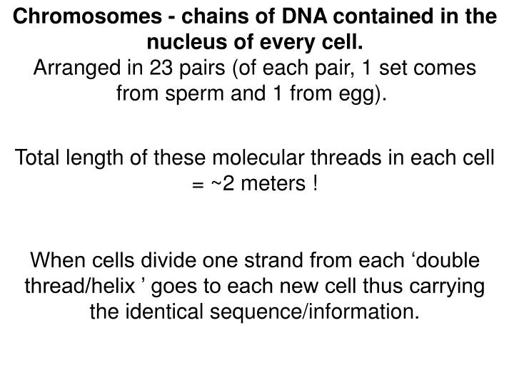 Chromosomes - chains of DNA contained in the nucleus of every cell.