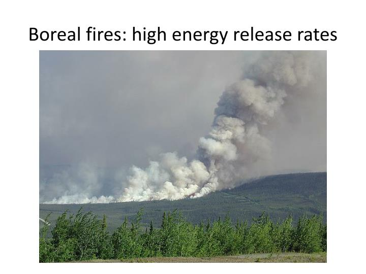 Boreal fires: high energy release rates