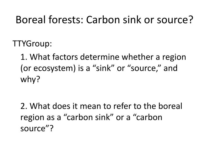Boreal forests: Carbon sink or source?