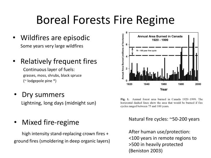 Boreal Forests Fire Regime