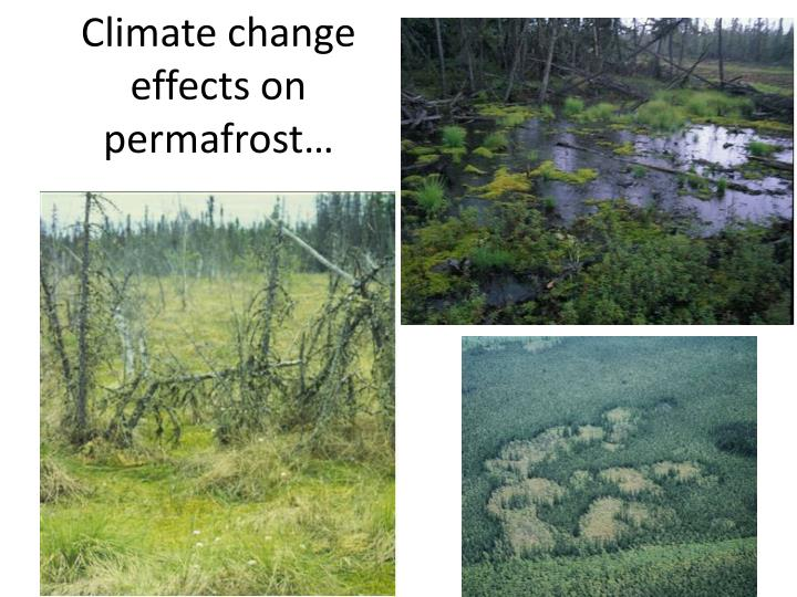 Climate change effects on permafrost…