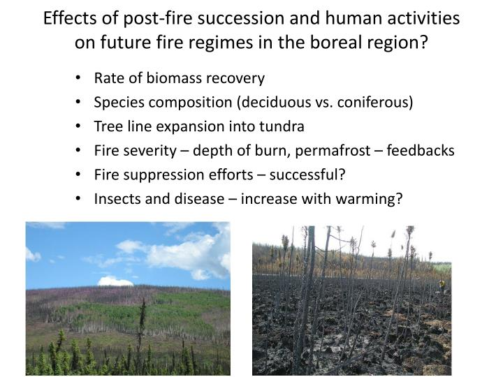 Effects of post-fire succession and human activities