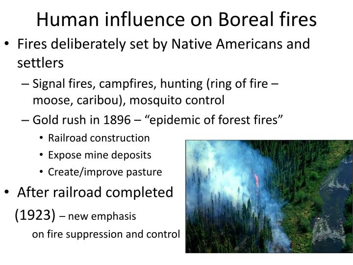 Human influence on Boreal fires