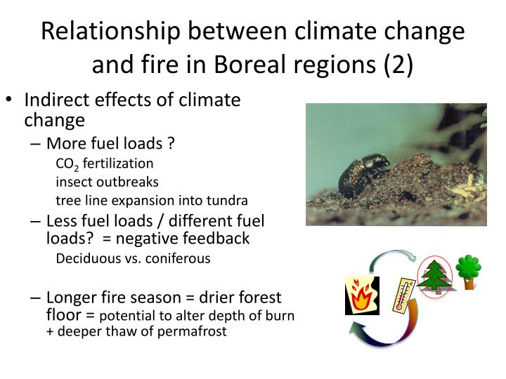 Relationship between climate change and fire in Boreal regions (2)