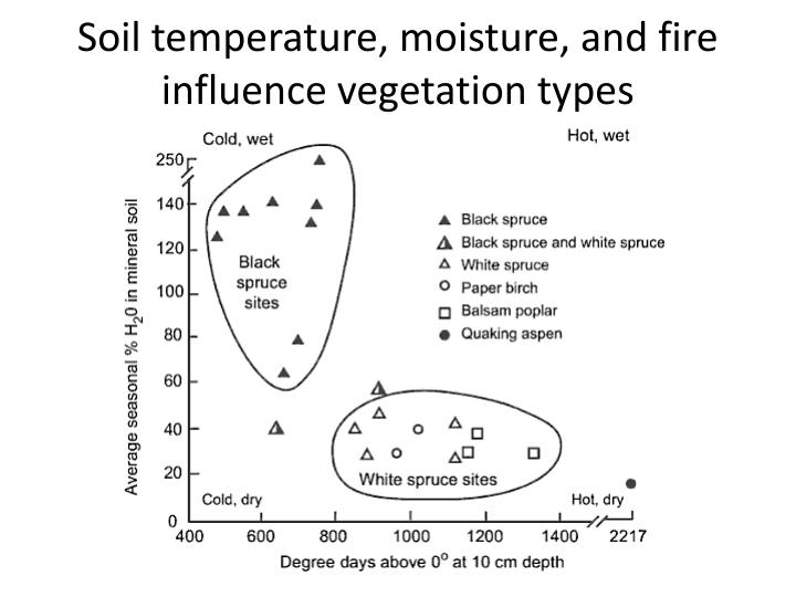 Soil temperature, moisture, and fire influence vegetation types