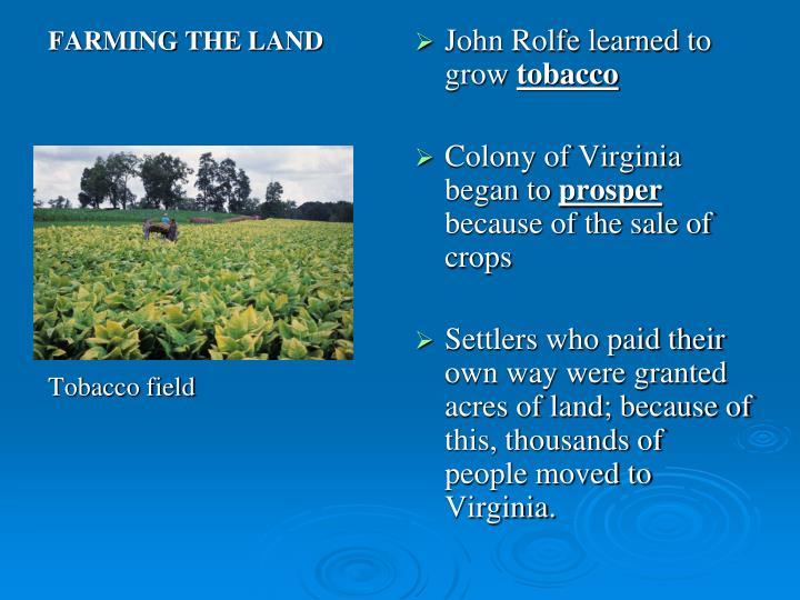 FARMING THE LAND