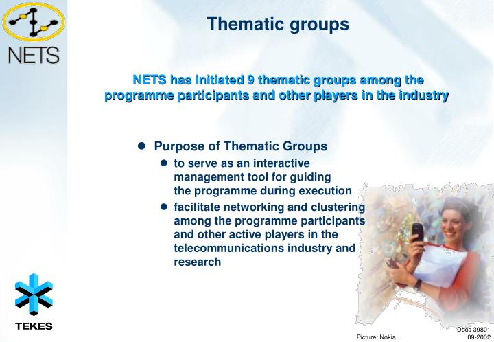 Purpose of Thematic Groups