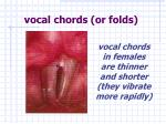 vocal chords or folds1