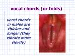 vocal chords or folds2