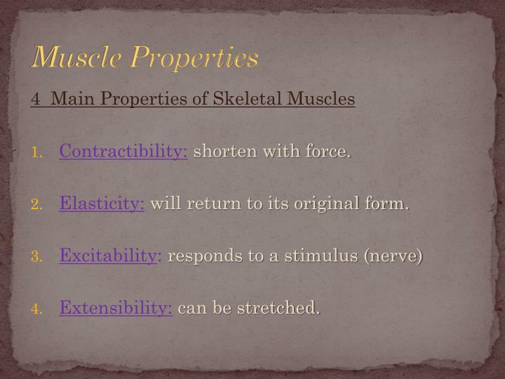 Muscle Properties