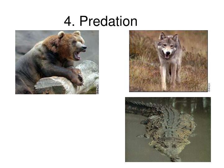 4. Predation