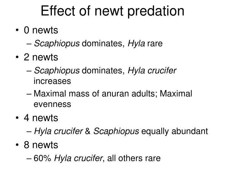 Effect of newt predation