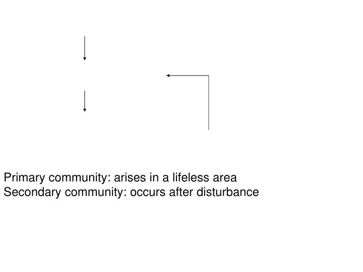 Primary community: arises in a lifeless area
