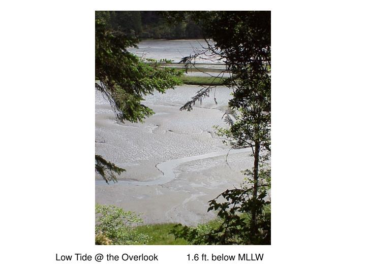 Low Tide @ the Overlook           1.6 ft. below MLLW