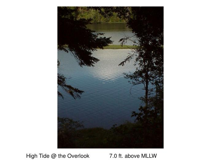 High Tide @ the Overlook             7.0 ft. above MLLW
