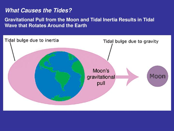 What Causes the Tides?