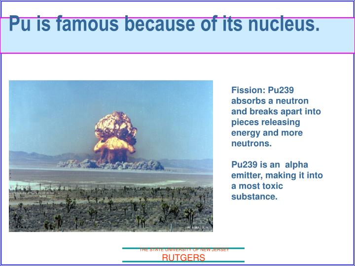 Pu is famous because of its nucleus.