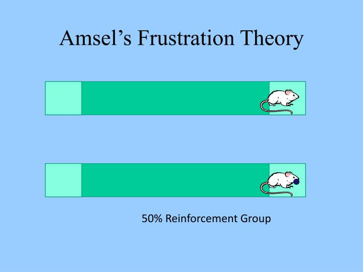 Amsel's Frustration Theory