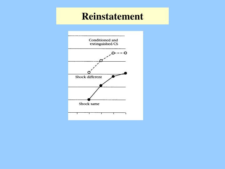 Reinstatement