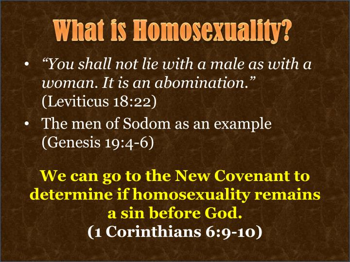 What is Homosexuality?