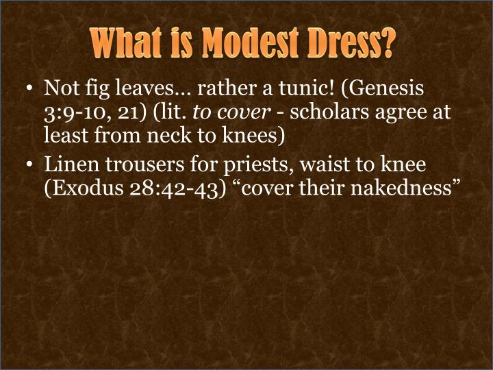What is Modest Dress?