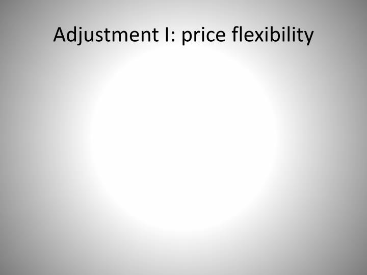 Adjustment I: price flexibility