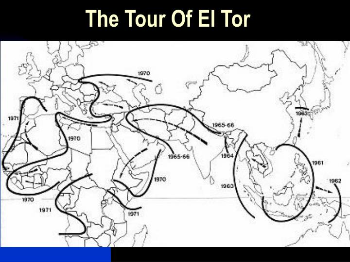 The Tour Of El Tor