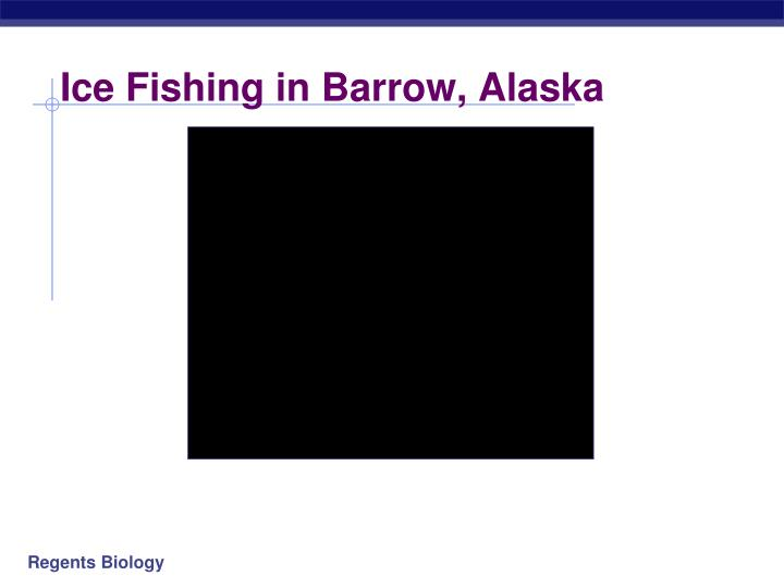 Ice Fishing in Barrow, Alaska