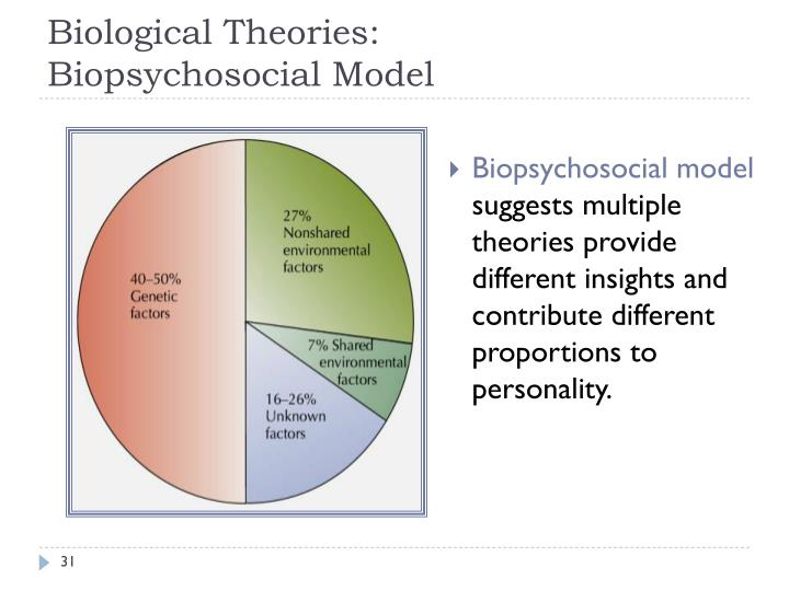 biological and humanistic approaches personality assessment essay Though it has been significant in personality assessment biological and humanistic approaches to personality valerye rogers psy/250- psychology of personality michael moore essay on biological & humanistic approaches to personality biological.