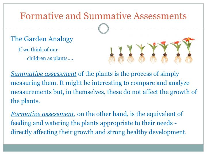 Formative and Summative Assessments