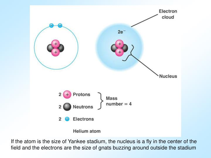 If the atom is the size of Yankee stadium, the nucleus is a fly in the center of the